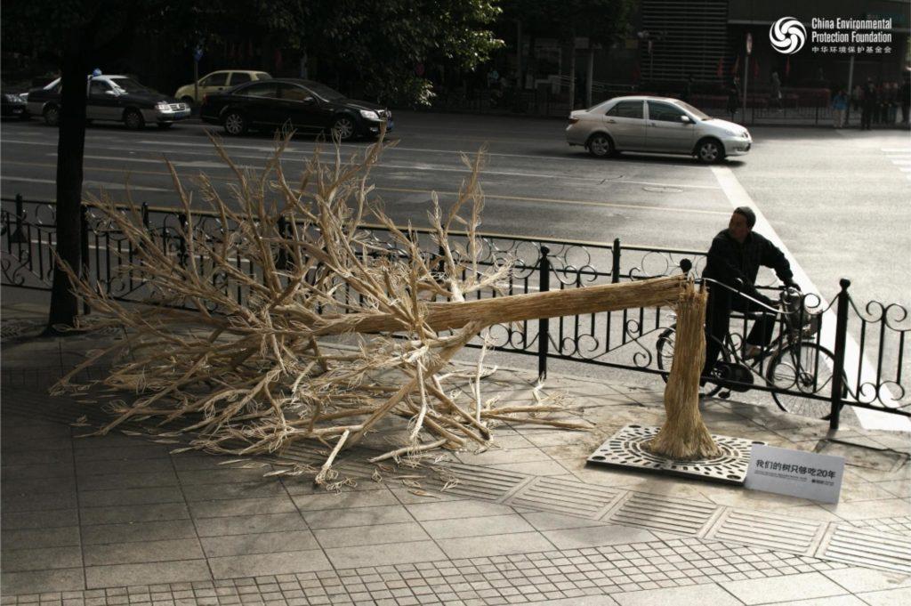 Защита окружающей среды и здоровья: Сломанное дерево, или как китайцы «съедают» свои леса