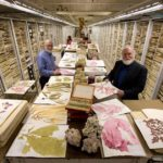 Национальный музей естественной истории США показал всю свою коллекцию экспонатов