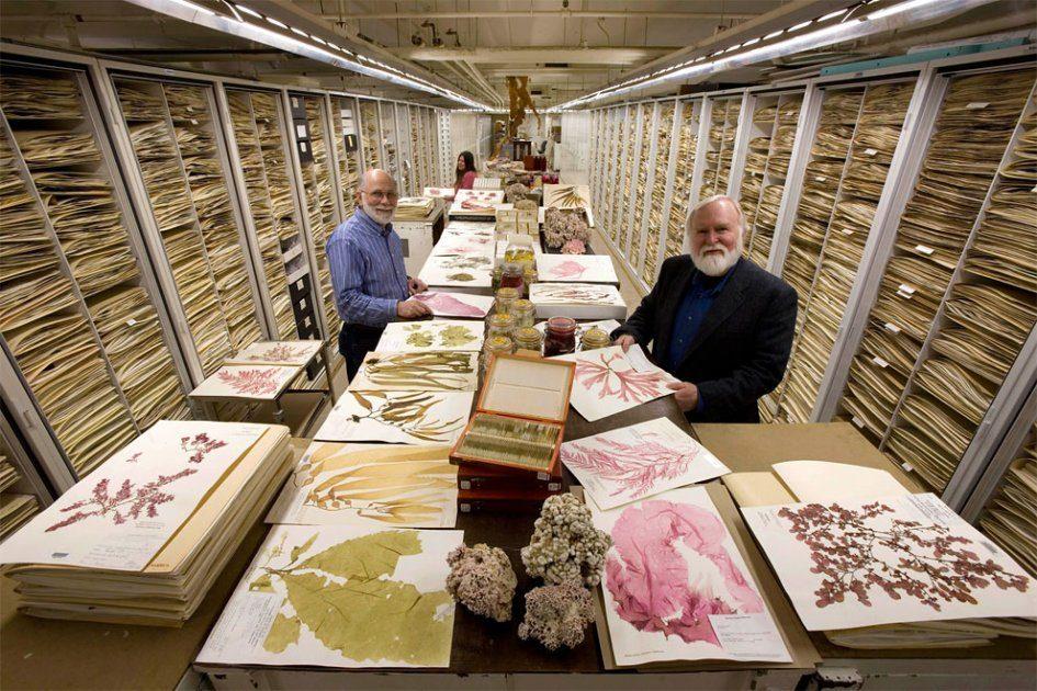 Национальный музей естественной истории показал всю свою коллекцию экспонатов