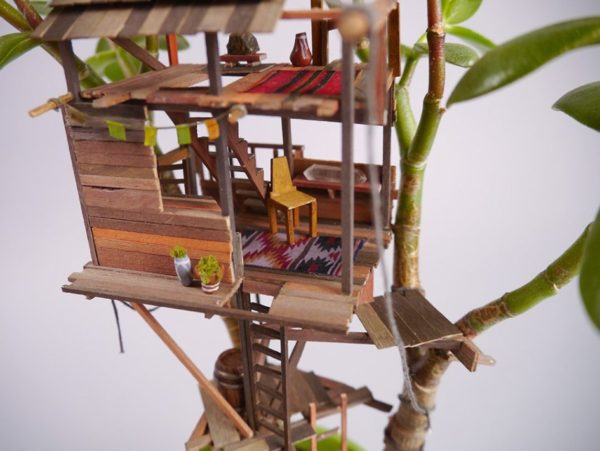 Джедедия Вольтц создает прекрасные дополнения к комнатным растениям