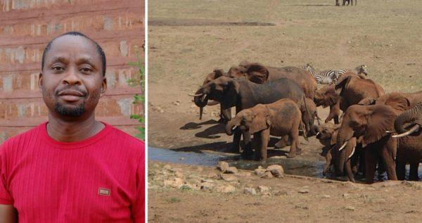 Фермер Патрик Мвала 4 раза в неделю привозит 15 тонн воды для диких животных