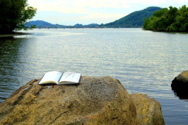 5 книг, которые читаются на одном дыхании
