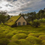 Церковь Хофскиркья — единственное здание с уникальной травяной крышей