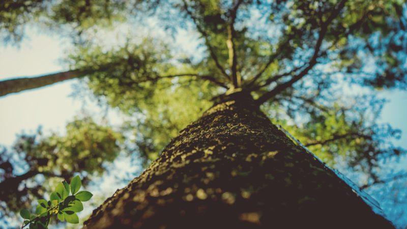 13 мифов о Земле, в которые мы верим