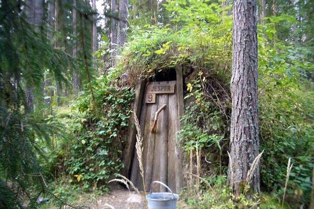 Картинки по запросу Дикий отель в шведском лесу