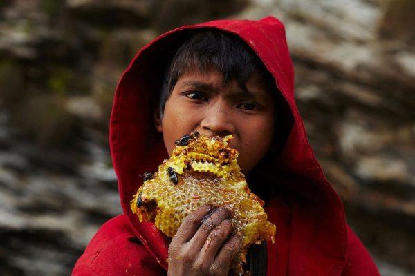 Фотограф Эндрю Ньюи показал сбор меда в племени Гурунги