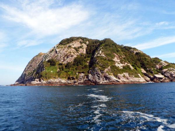 Кемада-Гранди - уникальный змеиный остров в Бразилии