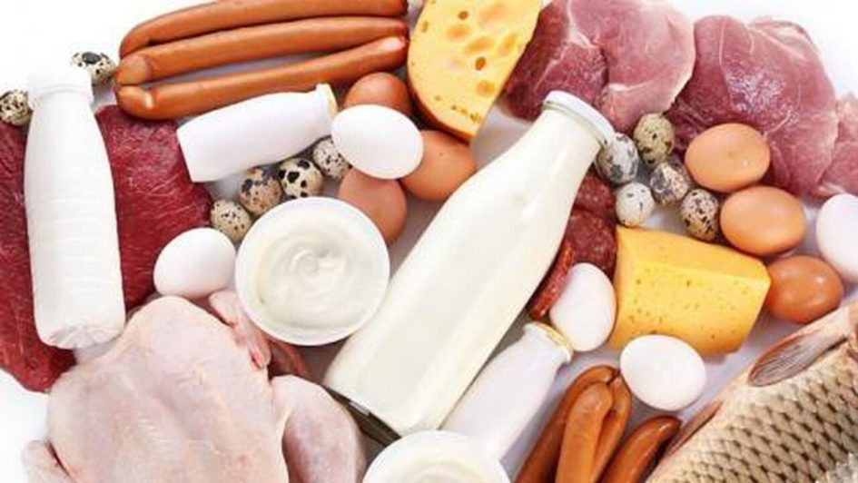 переизбыток белков, норма белка, сколько белка, повышенный белок, норма белка