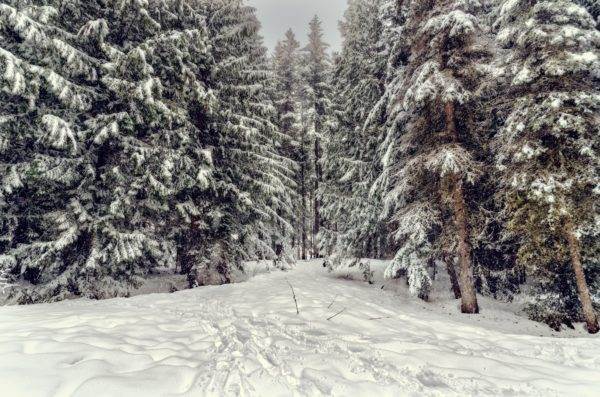 10 наиболее крупных снегопадов в истории