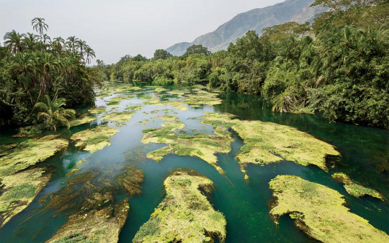 Вирунга - самый опасный национальный парк в мире