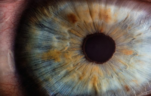 Как сохранить зрение: 10 полезных советов